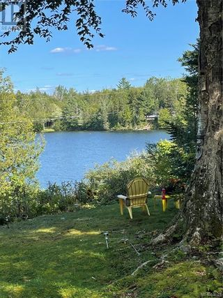 Photo 46: 359 Frye Road in Chamcook: House for sale : MLS®# NB056076