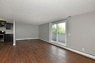 Photo 12: 306 280 Banister Drive: Okotoks Apartment for sale : MLS®# A1142558