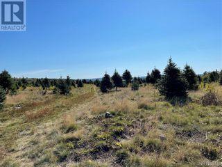 Photo 26: - Saint David Ridge in St. Stephen: Vacant Land for sale : MLS®# NB063465