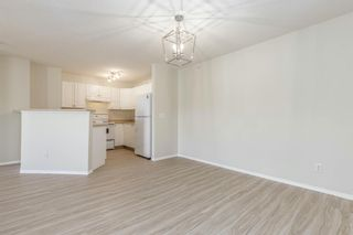 Photo 13: 306 2000 Citadel Meadow Point NW in Calgary: Citadel Apartment for sale : MLS®# A1055011