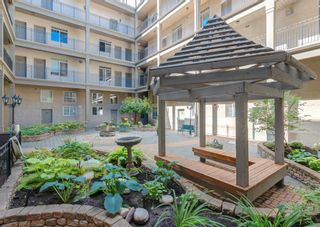 Photo 23: 224 527 15 Avenue SW in Calgary: Beltline Apartment for sale : MLS®# A1141714