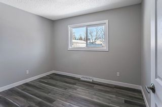 Photo 19: 40 Fyffe Road SE in Calgary: Fairview Detached for sale : MLS®# A1087903