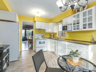 Photo 8: 6460 SWIFT AVENUE in Richmond: Woodwards House for sale : MLS®# R2127755