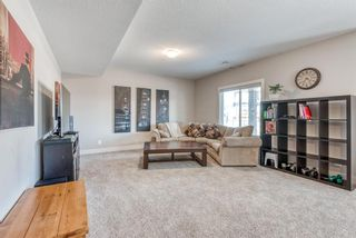 Photo 37: 26 NOLANCLIFF Crescent NW in Calgary: Nolan Hill Detached for sale : MLS®# A1098553