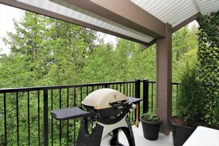 Photo 13: 411 11665 HANEY BYPASS in Maple Ridge: East Central Condo for sale : MLS®# R2263527