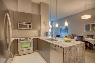 Photo 5: 301 788 12 Avenue SW in Calgary: Beltline Apartment for sale : MLS®# A1047331