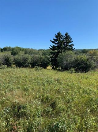 Photo 12: Highway 549 and 176 St W: Rural Foothills County Residential Land for sale : MLS®# A1141673