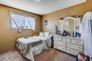 Photo 27: 216 Coral Shores Court NE in Calgary: Coral Springs Detached for sale : MLS®# A1116922