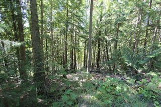 Photo 6: Lot 127 Vickers Trail: Land Only for sale : MLS®# 10071267