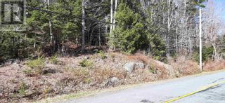 Photo 2: Lot Tupper Street in Milton: Vacant Land for sale : MLS®# 202109601