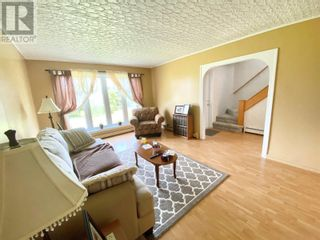 Photo 38: 5 Little Harbour Road in Twillingate: House for sale : MLS®# 1233301