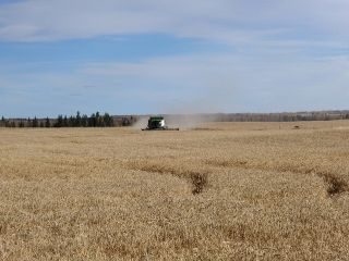 Photo 2: RR 13 TWP RD641: Rural Westlock County Rural Land/Vacant Lot for sale : MLS®# E4221291