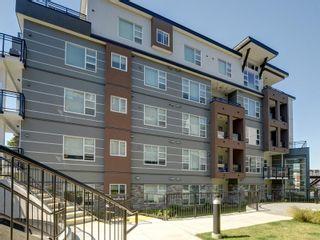 Photo 18: 202 1020 Inverness Rd in : SE Quadra Condo for sale (Saanich East)  : MLS®# 871613