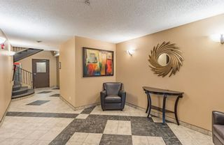 Photo 25: 107 11109 84 Avenue in Edmonton: Zone 15 Condo for sale : MLS®# E4242015