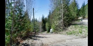 Photo 3: 2857 Vickers Trail: Anglemont House for sale (North Shuswap)