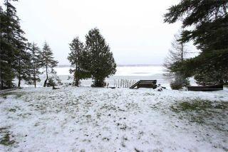 Photo 8: 101 Mckelvy Road in Kawartha Lakes: Rural Eldon House (Bungalow) for sale : MLS®# X3662796