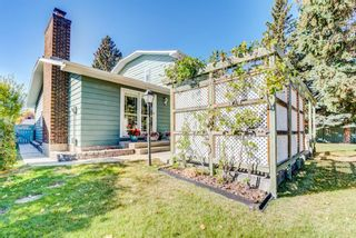 Photo 50: 244 Lake Moraine Place SE in Calgary: Lake Bonavista Detached for sale : MLS®# A1047703
