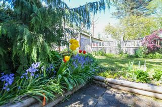 Photo 39: 2106 McKenzie Ave in : CV Comox (Town of) Full Duplex for sale (Comox Valley)  : MLS®# 874890