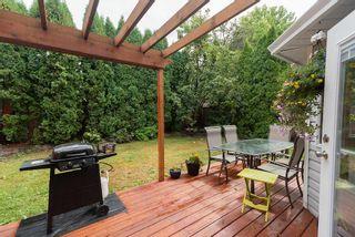 Photo 13: 11620 WARESLEY Street in Maple Ridge: Southwest Maple Ridge House for sale : MLS®# R2312204