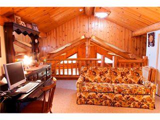 Photo 16: 2 Doyle Drive: Sundre House for sale : MLS®# C4022571