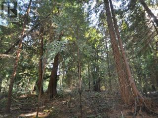 Photo 5: 1239/1241 VANCOUVER BLVD in Savary Island: Vacant Land for sale : MLS®# 16136
