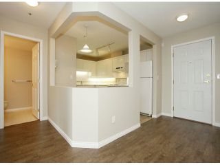 """Photo 27: 205 5556 201A Street in Langley: Langley City Condo for sale in """"Michaud Gardens"""" : MLS®# F1321121"""