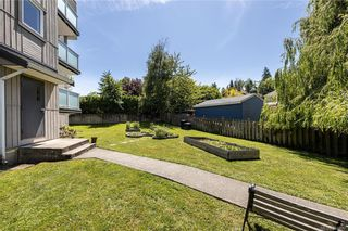 Photo 3: 202 3240 Glasgow Ave in Saanich: SE Quadra Condo for sale (Saanich East)  : MLS®# 844497