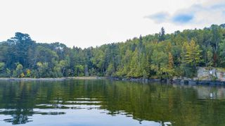 Photo 5: Lot 19 Five Point Island in South of Kenora: Vacant Land for sale : MLS®# TB212087