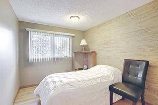 Photo 15: 3203 Oakwood Drive SW in Calgary: Oakridge Detached for sale : MLS®# A1109822