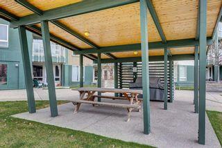 Photo 2: 313 3111 34 Avenue NW in Calgary: Varsity Apartment for sale : MLS®# C4237102