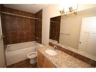 Photo 17: 300 SADDLEMEAD Close NE in CALGARY: Saddleridge Residential Detached Single Family for sale (Calgary)  : MLS®# C3500117