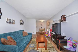 Photo 10: 106 2529 Wark St in VICTORIA: Vi Hillside Condo for sale (Victoria)  : MLS®# 766540