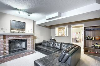 Photo 17: 163 Erin Meadow Green SE in Calgary: Erin Woods Detached for sale : MLS®# A1077161