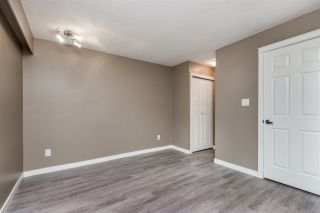 "Photo 11: 105 11957 223 Street in Maple Ridge: West Central Condo for sale in ""ALOUETTE APARTMENTS"" : MLS®# R2389954"