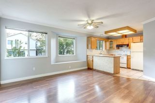 Photo 8: 1784 PEKRUL PLACE in Port Coquitlam: Home for sale