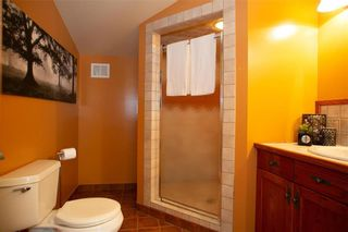 Photo 40: 151 Birchdale Avenue in Winnipeg: Norwood Flats Residential for sale (2B)  : MLS®# 202120177
