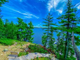 Photo 11: 48 LILY PAD BAY in KENORA: House for sale : MLS®# TB202139