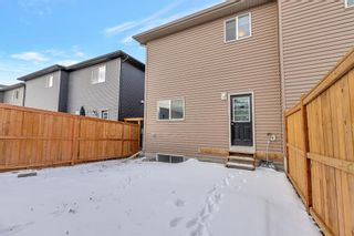Photo 29: 263 Cornerstone Avenue NE in Calgary: Cornerstone Semi Detached for sale : MLS®# A1069898
