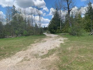 Photo 33: 220 Mcguire Beach Road in Kawartha Lakes: Rural Carden House (Bungalow) for sale : MLS®# X5338564