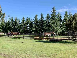 Photo 43: 140 50202 RGE RD 244 A: Rural Leduc County House for sale : MLS®# E4229691