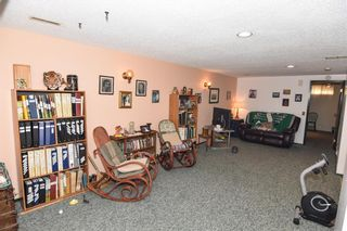 Photo 29: 315 Rundlehill Drive NE in Calgary: Rundle Detached for sale : MLS®# A1153434
