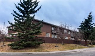 Main Photo: 1-10 11403 8 Street SW in Calgary: Southwood Multi Family for sale : MLS®# A1040145