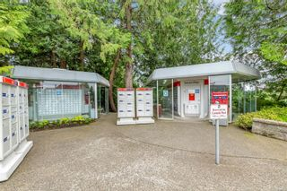 Photo 60: 501 Marine View in : ML Cobble Hill House for sale (Malahat & Area)  : MLS®# 883284