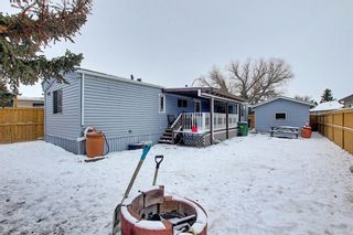 Photo 25: 128 Big Springs Drive SE: Airdrie Detached for sale : MLS®# A1065928
