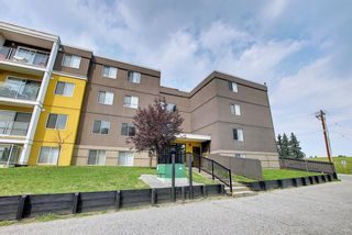 Photo 27: 303 4455A Greenview Drive NE in Calgary: Greenview Apartment for sale : MLS®# A1108022