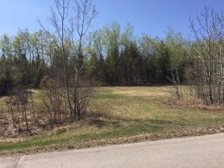 Photo 5: 57 Casa Vista Drive: Rural Sturgeon County Rural Land/Vacant Lot for sale : MLS®# E4195502