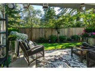 "Photo 20: 45 6591 195A Street in Surrey: Clayton Townhouse for sale in ""ZEN"" (Cloverdale)  : MLS®# R2201925"