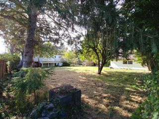 Photo 11: 2620 Bowker Ave in VICTORIA: OB Estevan House for sale (Oak Bay)  : MLS®# 798167