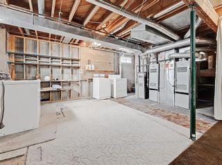 Photo 33: 216 Whitewood Place NE in Calgary: Whitehorn Detached for sale : MLS®# A1116052