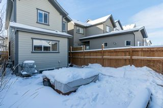 Photo 27: 86 Masters Crescent SE in Calgary: Mahogany Detached for sale : MLS®# A1071042